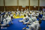 JONEDO_SummerJudoRocks_2014_13
