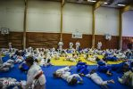 JONEDO_SummerJudoRocks_2014_14