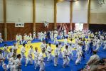 JONEDO_SummerJudoRocks_2014_41
