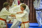 JONEDO_SummerJudoRocks_2014_50