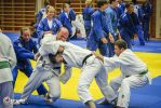 JONEDO_SummerJudoRocks_2014_82