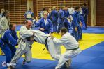 JONEDO_SummerJudoRocks_2014_83