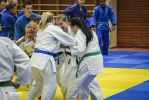 JONEDO_SummerJudoRocks_2014_84