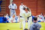 JONEDO_SummerJudoRocks_2016_127